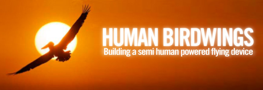 human birdwings